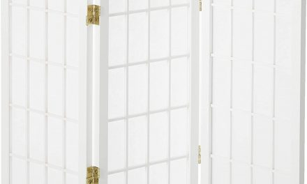 Top Chinese folding screen room divider Solutions For Your Home Or Office